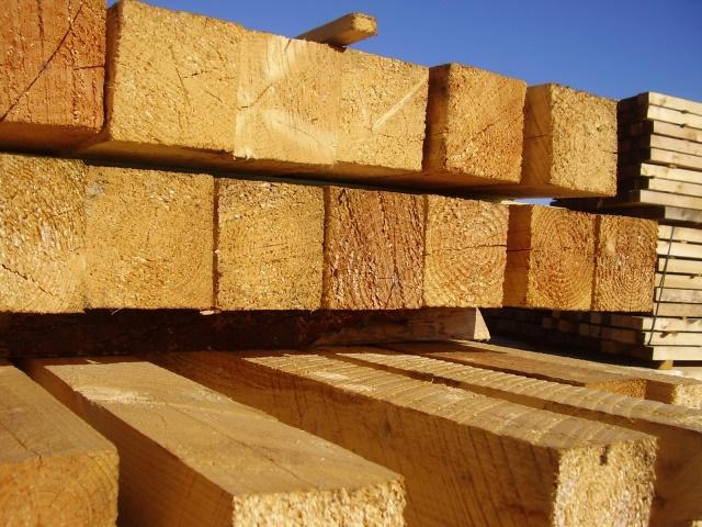 Holz Bill Amel